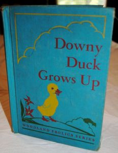 Downy Duck